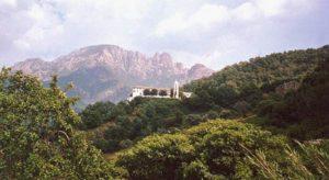 stage yoga Corse du sud – été 2020